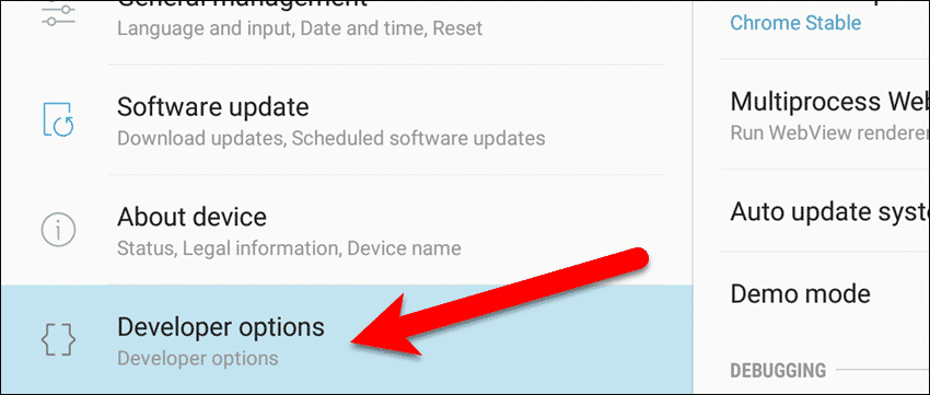 Tap Developer options in the Settings app.