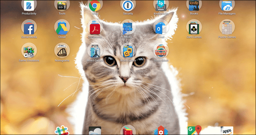 Cat Live Wallpaper
