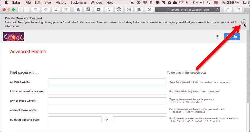 New private window open in Safari on a Mac
