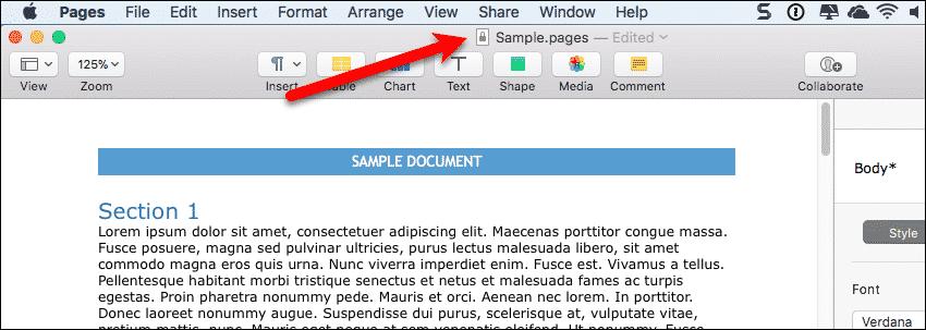 Lock icon next to file name