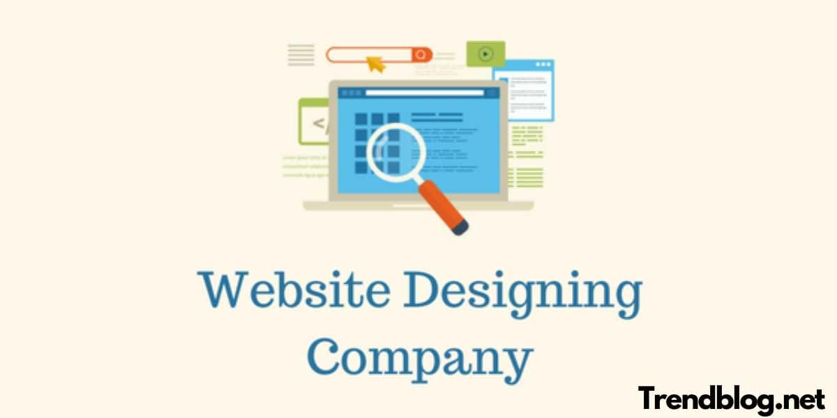 Why Do You Need A Web Design Company?